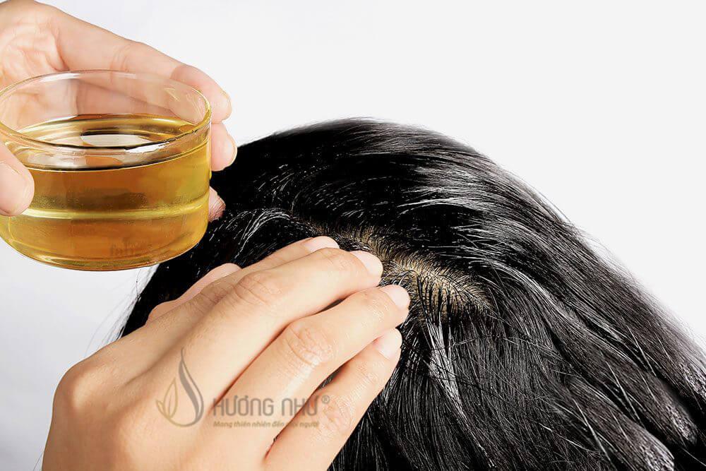 Phát triển tóc - Massage da đầu